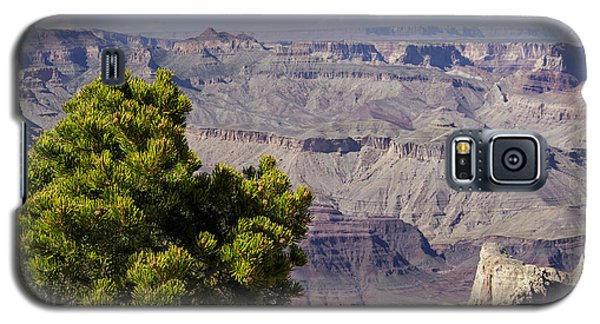 The Grand Canyon Galaxy S5 Case by Marianne Campolongo