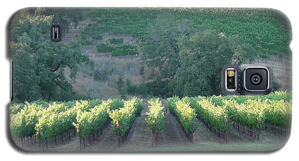 Galaxy S5 Case featuring the photograph The Grape Lines by Shawn Marlow