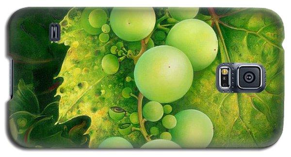 The Grapes Galaxy S5 Case by Anna Ewa Miarczynska
