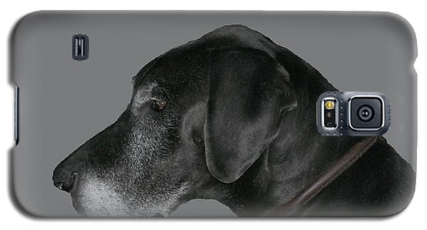 The Great Dane Galaxy S5 Case by Barbara S Nickerson