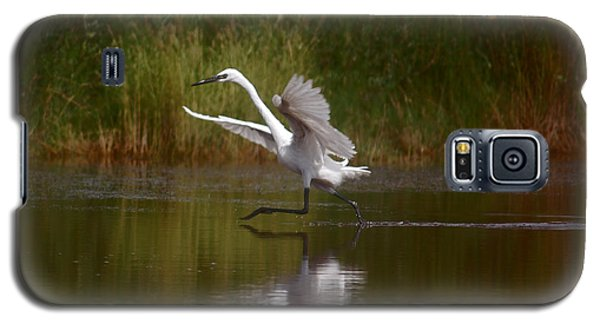 Galaxy S5 Case featuring the photograph The Great Egret by Leticia Latocki
