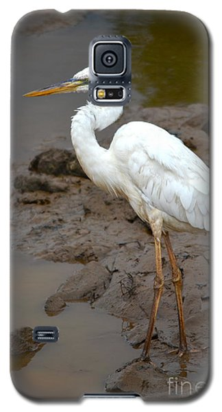 The Great White Heron  Galaxy S5 Case