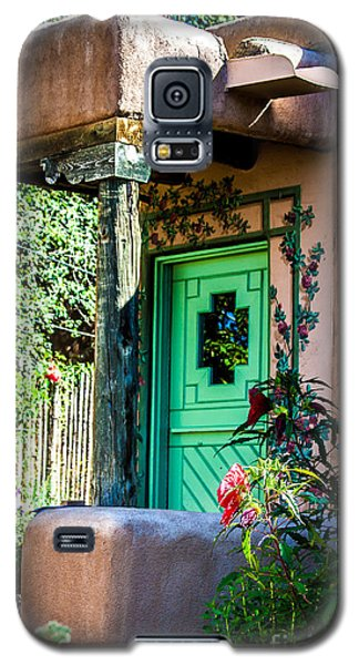 The Green Door Galaxy S5 Case by Jim McCain