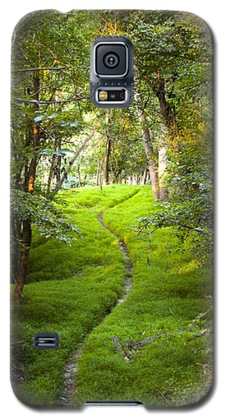 The Green Path Galaxy S5 Case