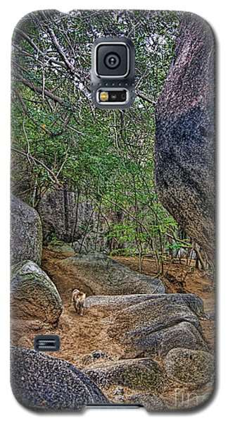 Galaxy S5 Case featuring the photograph The Guide by Olga Hamilton