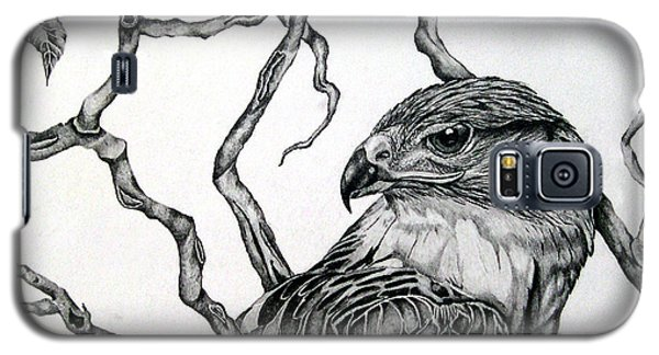 Galaxy S5 Case featuring the drawing The Hawk by Alison Caltrider
