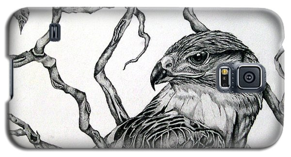 The Hawk Galaxy S5 Case by Alison Caltrider