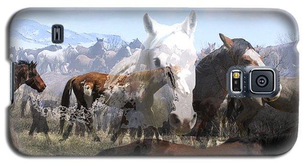The Herd 2 Galaxy S5 Case