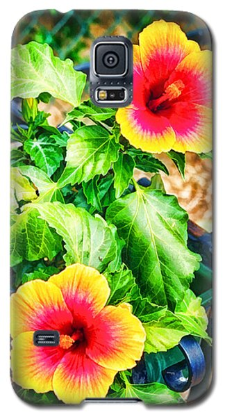 The Hibiscus Of Torcello Galaxy S5 Case
