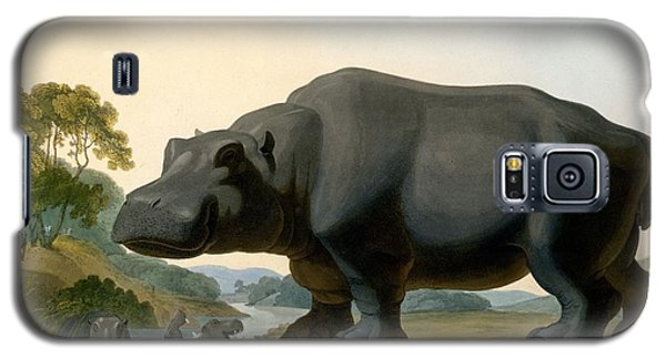 The Hippopotamus, 1804 Galaxy S5 Case by Samuel Daniell