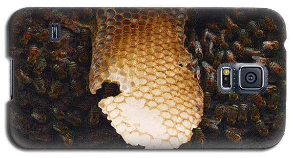 The Hive  Galaxy S5 Case by Shawn Marlow