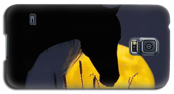The Horse In The Moon Galaxy S5 Case