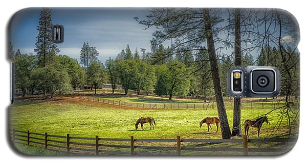 The Horses Of Placerville Galaxy S5 Case