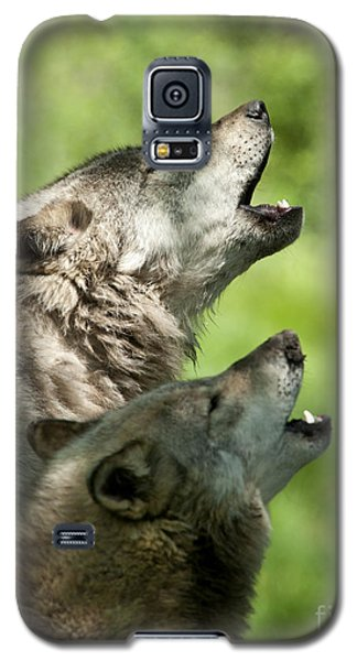 Galaxy S5 Case featuring the photograph The Howling by Wolves Only