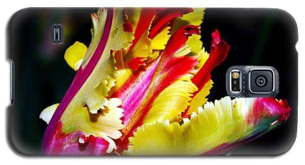 The Intruder Galaxy S5 Case