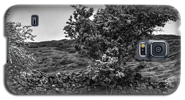 Galaxy S5 Case featuring the photograph The Irish Wall And The Tree by Juergen Klust