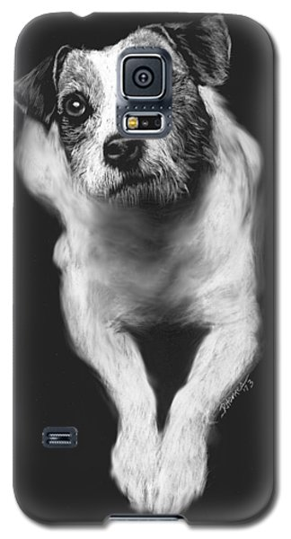 Galaxy S5 Case featuring the drawing The Jack Russell Stare- Got Ball? by Rachel Hames