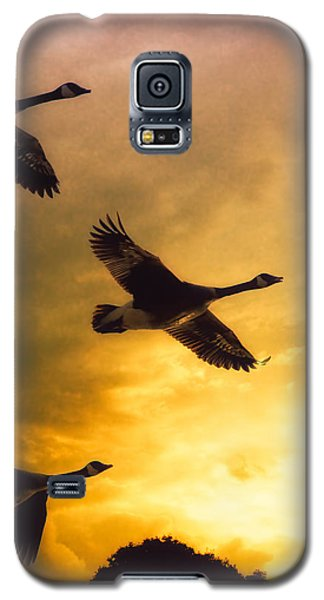 The Journey South Galaxy S5 Case by Bob Orsillo