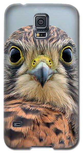 The Kestrel Face To Face Galaxy S5 Case