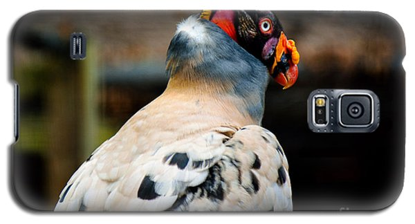 The King Galaxy S5 Case by Lisa L Silva