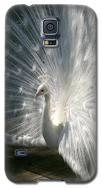 The King Galaxy S5 Case