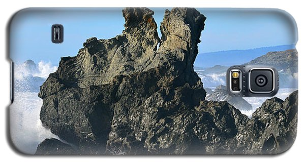 The Kissing Rocks Galaxy S5 Case
