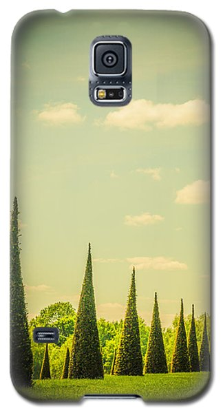 The Knot Garden's Triangular Landscaping Galaxy S5 Case