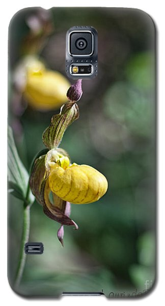 The Lady Slipper Galaxy S5 Case by Laurinda Bowling