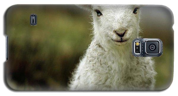 The Lamb Galaxy S5 Case by Angel  Tarantella