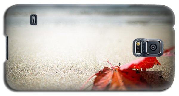 The Last Leaf Galaxy S5 Case by Susan Cole Kelly Impressions