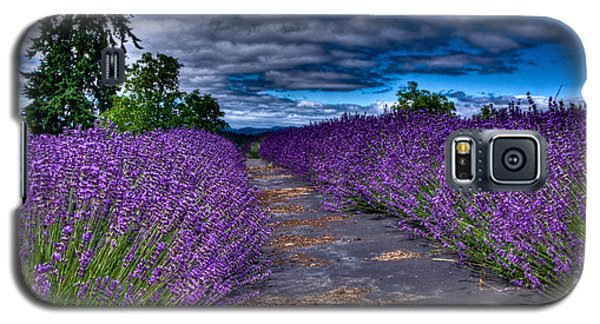 The Lavender Field Galaxy S5 Case by Thom Zehrfeld