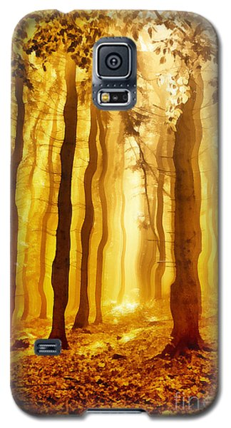 The Light Forest Paint Galaxy S5 Case by Odon Czintos