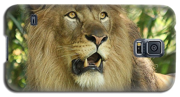 The Lion King Galaxy S5 Case