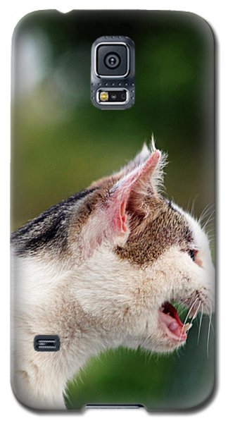 Galaxy S5 Case featuring the photograph The Lion Within by Lorna Rogers Photography
