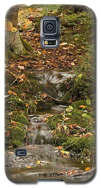 The Little Brook That Could Galaxy S5 Case