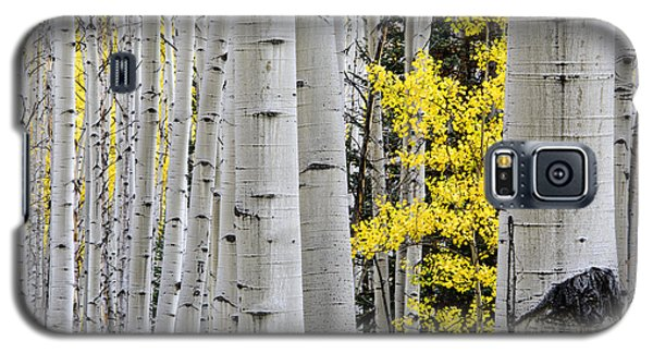 Galaxy S5 Case featuring the photograph The Littlest One by The Forests Edge Photography - Diane Sandoval