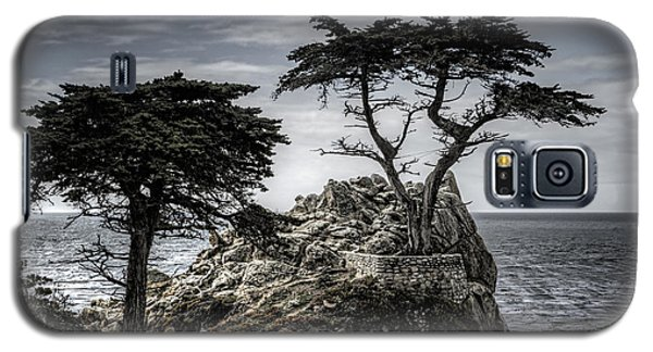 The Lone Cypress Galaxy S5 Case