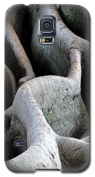 The Long And Winding Road Galaxy S5 Case