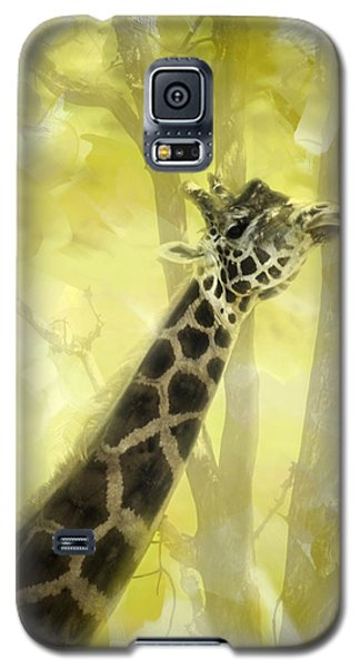 The Long Morning Stretch Galaxy S5 Case