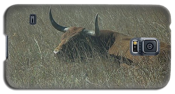 Galaxy S5 Case featuring the photograph The Longhorn by Alan Lakin