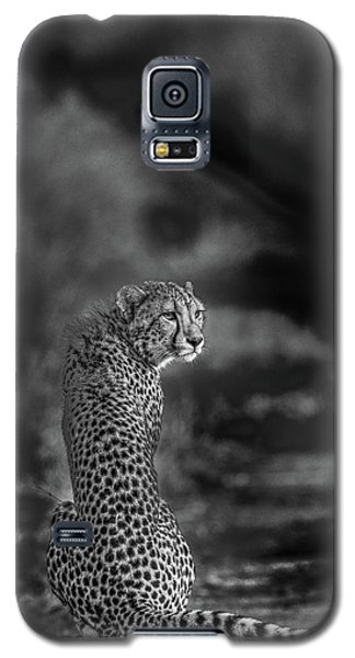 Cheetah Galaxy S5 Case - The Look Back by Jaco Marx