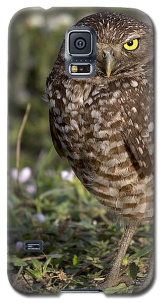 The Look Galaxy S5 Case