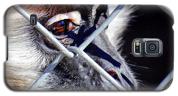Galaxy S5 Case featuring the photograph The Look Of Despair by Jason Politte