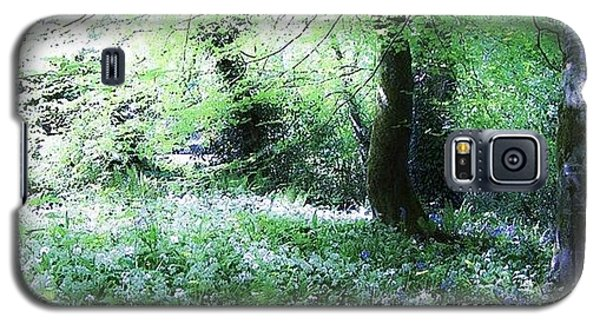 Fantasy Galaxy S5 Case - The Magical Forest Around Blarney by Teresa Mucha