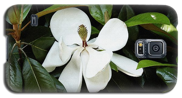Galaxy S5 Case featuring the photograph The Magnolia Bloom  by James C Thomas