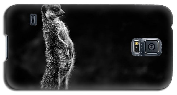 Meerkat Galaxy S5 Case - The Meerkat by Greetje Van Son