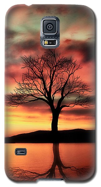 The Memory Tree Galaxy S5 Case by Ally  White
