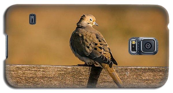The Morning Dove Galaxy S5 Case