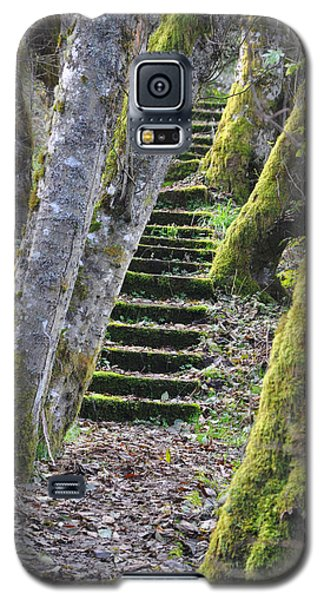 The Moss Stairs Galaxy S5 Case by Kirt Tisdale