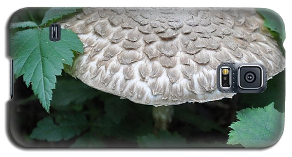 The Mushroom Galaxy S5 Case by Kirt Tisdale